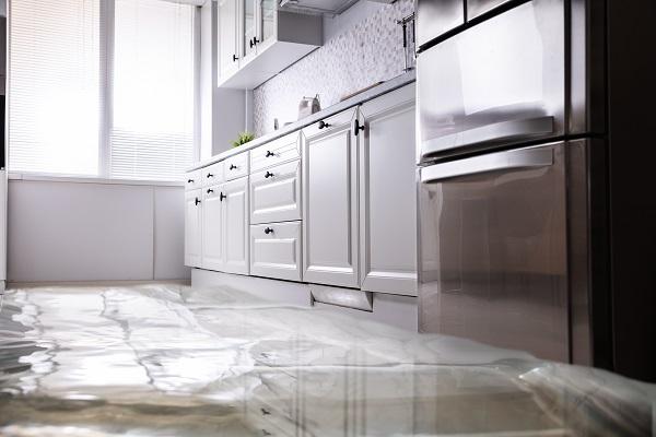 frigidaire refrigerator leaks water